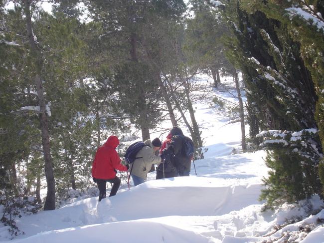 Lézig'zagueurs sous la neige !