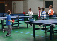 "29 Mai 2011 > Tournoi de tennis de table ""Claude Descous"""