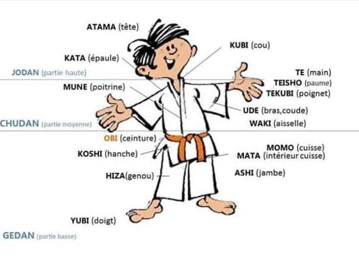 Judo images à étudier
