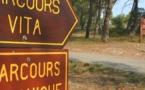 Parcours Vita - Pinède